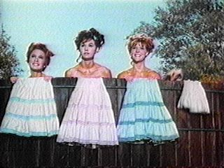 And who could forget the lovely sisters of Petticoat Junction. Though I am not sure I'd want them swimming in my drinking water.