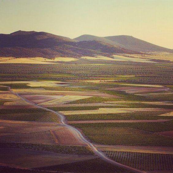 De la Mancha a los Montes de Toledo.