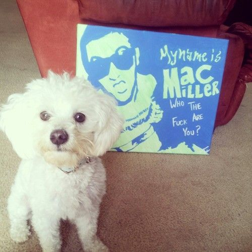 My Puppy and my Mac Miller painting!