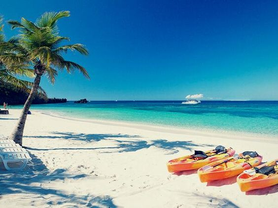 Take a kayak trip to the reef (don't miss beach BBQ on your way back).