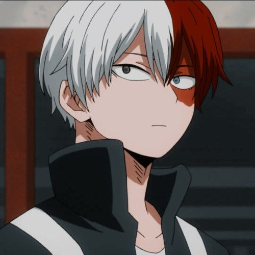 Pin On Todoroki