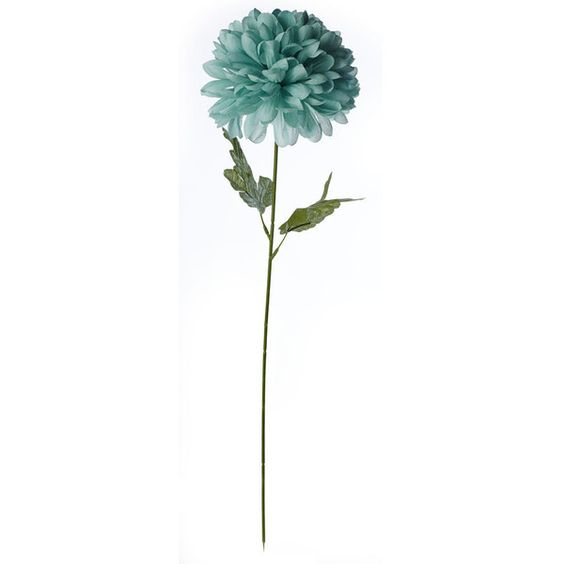 Wilko Single Stem Pom Pom Flower Aqua (2.46 CAD) ❤ liked on Polyvore featuring home, home decor, floral decor, flowers, fillers, plants, backgrounds, nature, artificial bouquets and silk flower arrangement