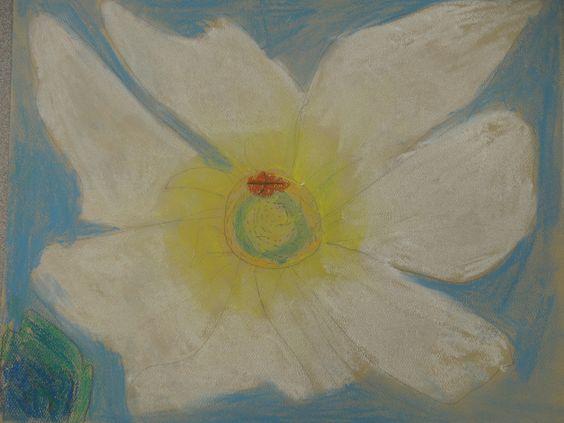 O'Keeffe Flower - Soft pastel, Kai 3rd grade