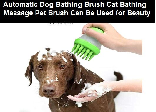 3 Uses Regular Grooming Is An Important Part Of The Dog So Make