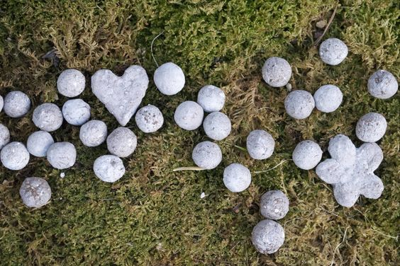 How To Make Seed Bombs For Kids via Garden Collage