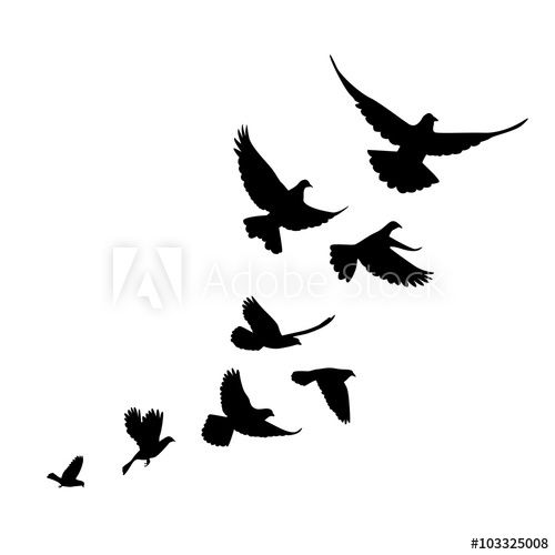 A Flock Of Birds Pigeons Go Up Black Silhouette On A White Ba In 2021 Flying Bird Silhouette Flying Bird Tattoo Bird Silhouette