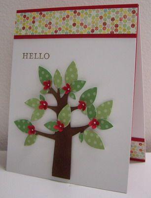 Flowering Polka-dot Tree