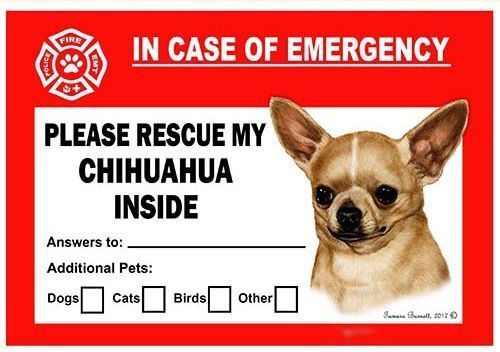 Chihuahua Dog Emergency Window Cling Chihuahuacare Dog