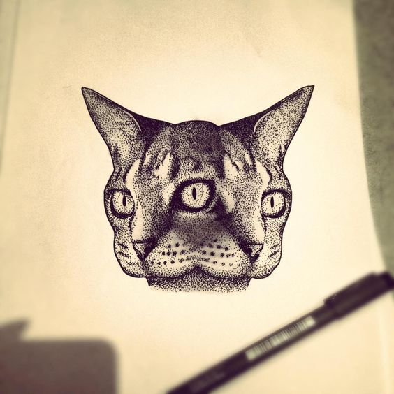 That's freakin' cool and I don't even like cats !