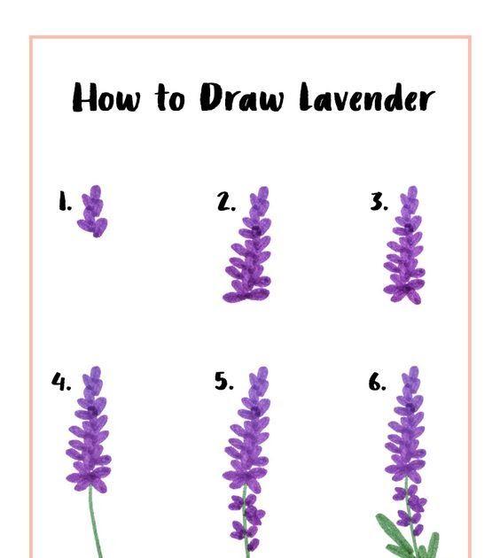 Paling Populer 24 Gambar Bunga Lavender Lukisan Lukisan Gambar Bunga Lavender Gambar Bunga Lukisan Bunga Lavender 1 Dekorasi Ruma Di 2020 Lukisan Bunga Bunga Gambar