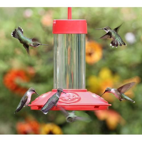 Said To Be The Best Hummingbird Feeder Ever Introducing The New Solution For Cleaner Feeders Dis Humming Bird Feeders Bird Feeders Glass Hummingbird Feeders