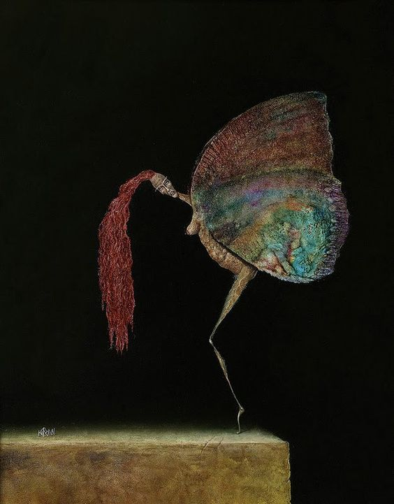 Pobre borboleta