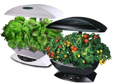 Hydroponic gardening indoor and hydroponics on pinterest for Indoor gardening accessories