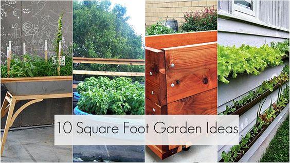 Square foot garden ideas.