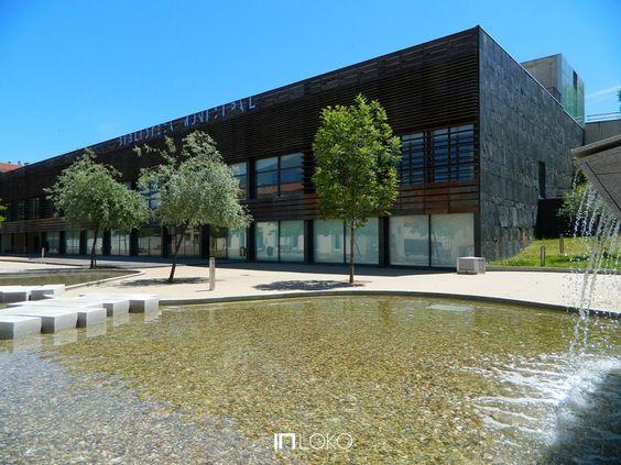 Biblioteca Municipal - Castelo Branco -  Reis de Figueiredo e Joseph Mateo
