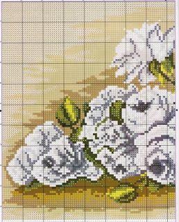 White Flowers 1/2