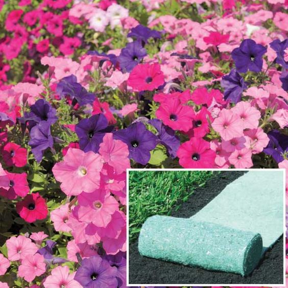 These pre-seeded mats let you roll out flower gardens with no digging or planting by hand!