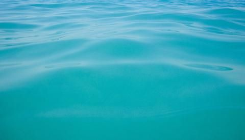 5 Causes of Cloudy Swimming Pool Water and How to Clear ...