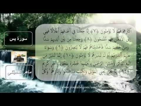 سورة يس كاملة مكتوبه استماع وتتبع بصوت الشيخ ماهر المعيقلي خلفيه متحركه Youtube Youtube Enjoyment