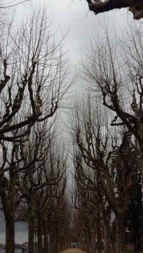 Parque Manuel Braga..Dia  nublado mesmo assim  lindo.