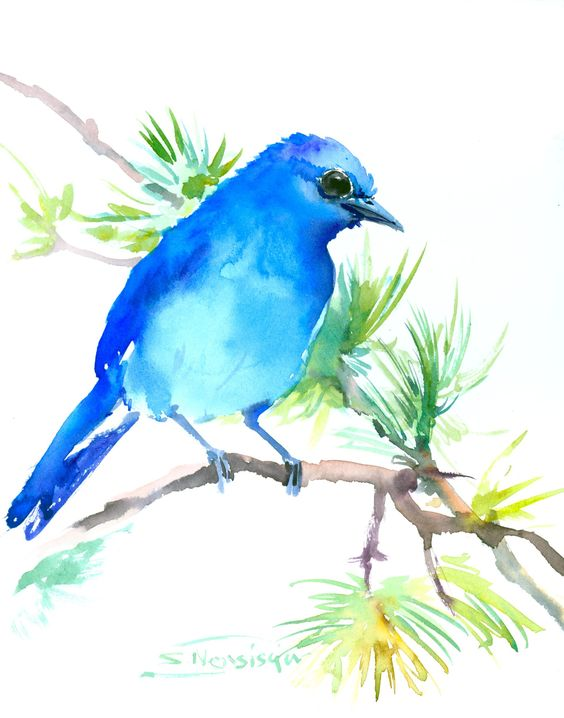 """Mountain Bluebird. This is not a copy or print or watercolor from photo art ! The painting is one of my original watercolors, and i never repeat the same artwork twice. The size of the painting is 10"""" x 8"""" (35,5 x 24,5 cm) on acid free, 140 lb,cold press watercolor paper (FABRIANO ARTISTICO), made of 100% cotton. Signed on front and on back."""