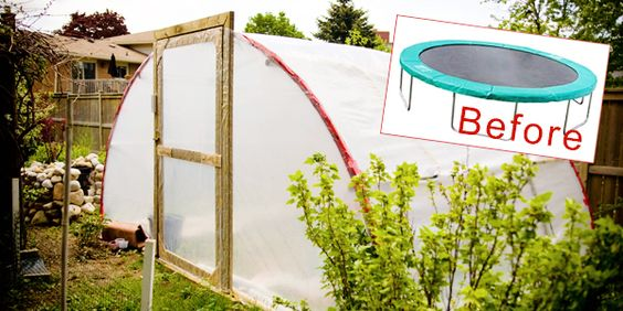Turn a Trampoline Into a Greenhouse! Absolutely amazing idea that will solve my green house longing for not much money, and also get rid of the trampoline when the kids grow out of it!! :) Happy fun job