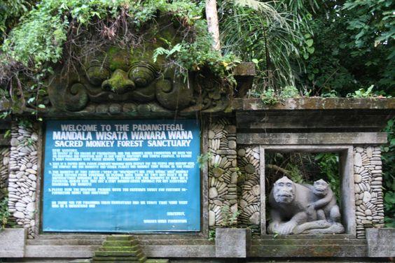 Ubud Monkey Forest: