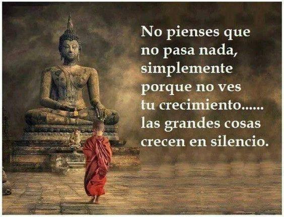 ...las grandes cosas crecen en silencio. #Frase #Buda Frases religión, espiritualidad, paz, amor quotes www.amanecerdelal...