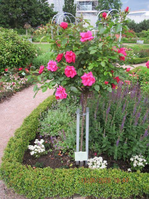 Planten Un Blomen In 2020 Botanischer Garten Planen Urlaub In Deutschland