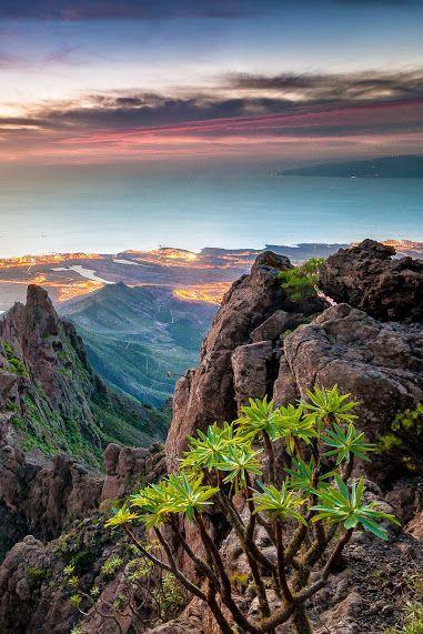 #jemevade #ledeclicanticlope / Iles Canaries - Tenerife: