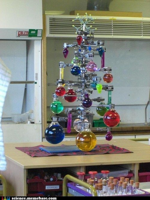 Christmas tree smells :) yum | Blinded by SciEnCe!!! | Pinterest
