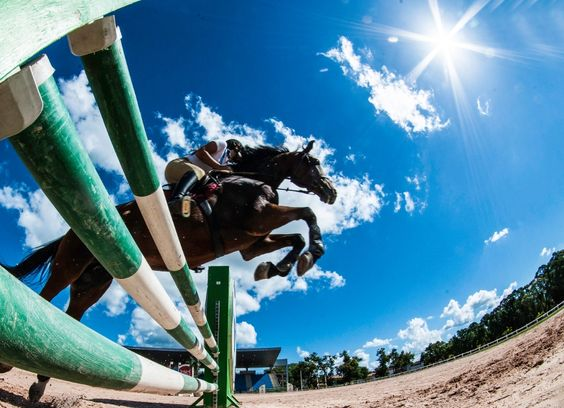 Read more about the 2016 Equestrian Olympic games. Here you'll find info on the rules, the schedules and you can stay up to date on competitors and their horses!