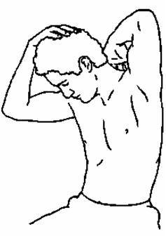levator scapulae stretch -