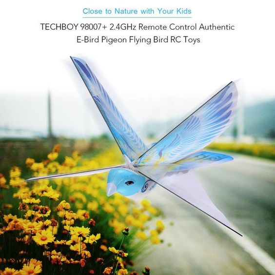 GoolSky 98007 24GHz Remote Control Toy RC Bird In Air Planes Animal Authentic E Flying Toys Drone Electrict