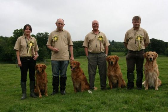 Dog behaviourist can help with walkies - http://www.articlesbase.com/training-articles/how-a-dog-behaviourist-can-help-with-walkies-7416755.html