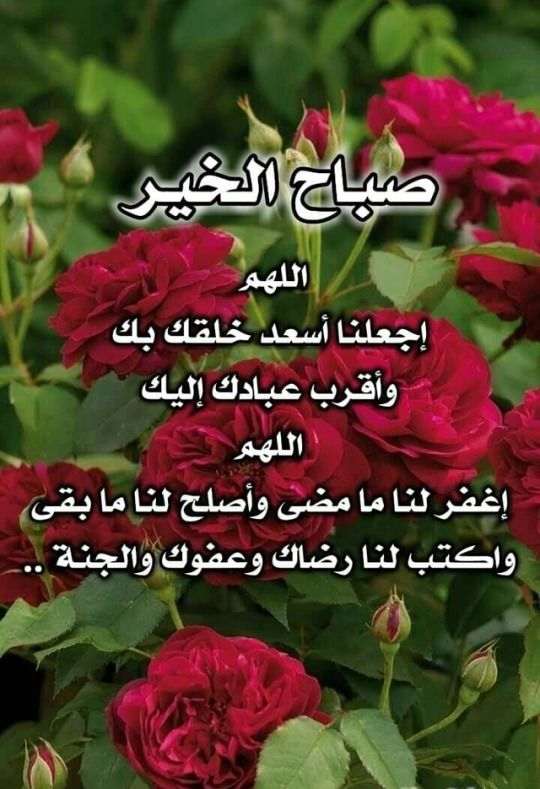 نسمات الفجر Good Morning Animation Good Morning Roses Beautiful Morning Messages