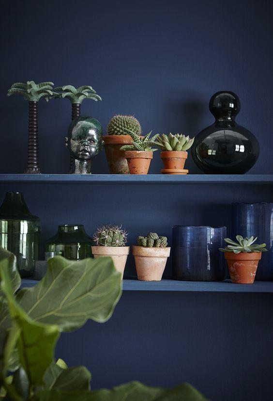 blauwe muur met terracotta potten