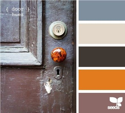 colors (orange & brown & grey)