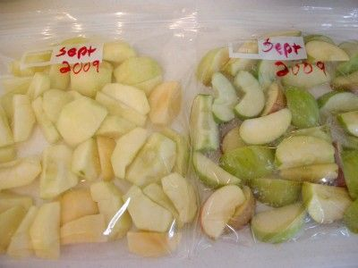 Gallon of water.  Take cup of that and mix with 1/4 cup salt.  Dissolve and mix all well and dip sliced apples in salt water before freezing.