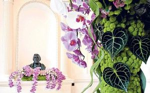 Oxford College is transformed into floral paradise