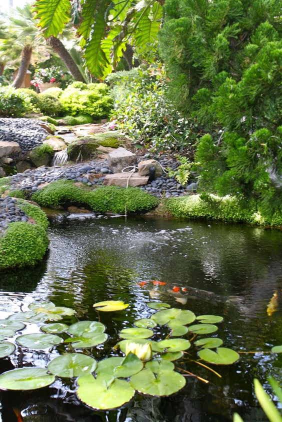 Meditation garden meditation and gardens on pinterest for Japanese meditation garden
