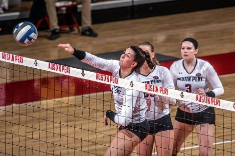 Apsu Volleyball Sweeps Trevecca Tuesday At The Dunn Center Volleyball Austin Peay State University Sweep