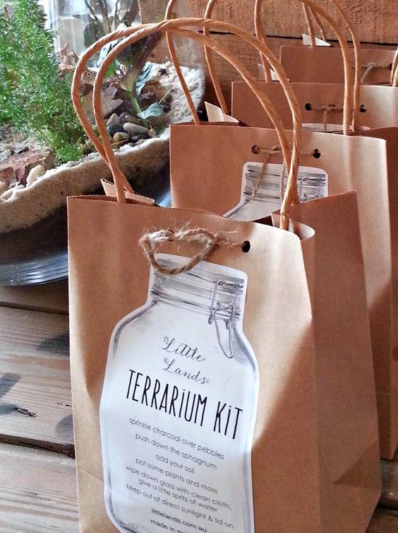 The Terrarium Kit — Little Lands Little Lands Terrariums Melbourne
