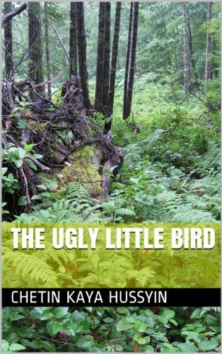 The Ugly Little Bird by Chetin Kaya Hussyin, http://www.amazon.co.uk/dp/B00IG7SR9U/ref=cm_sw_r_pi_dp_rwYBub1E64WTS