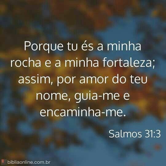 Conheca Sua Biblia De Capa A Capa Frases Motivacionais Salmos