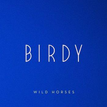 Birdy – Wild Horses acapella