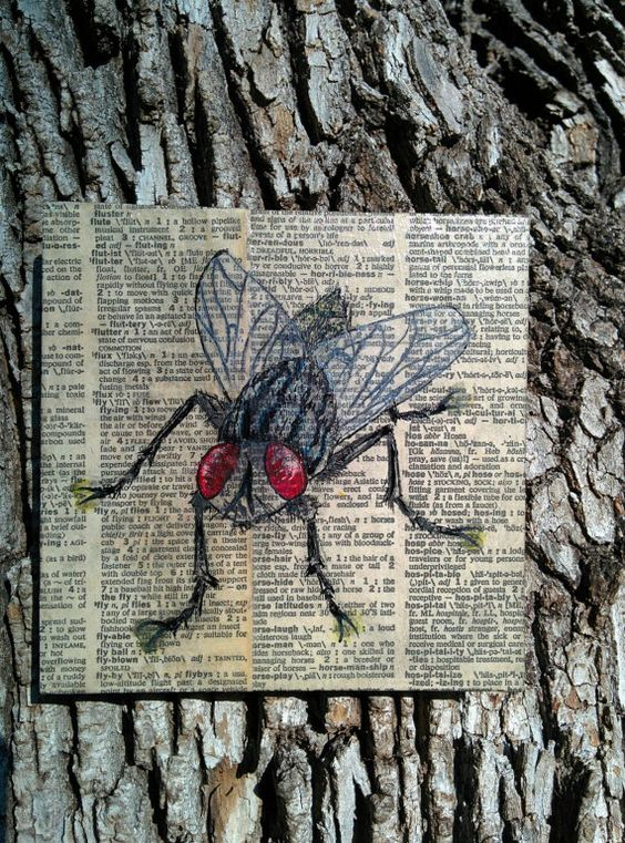 Christmas gift idea Check out this item in my Etsy shop https://www.etsy.com/listing/491673871/to-be-but-a-fly-on-the-wall