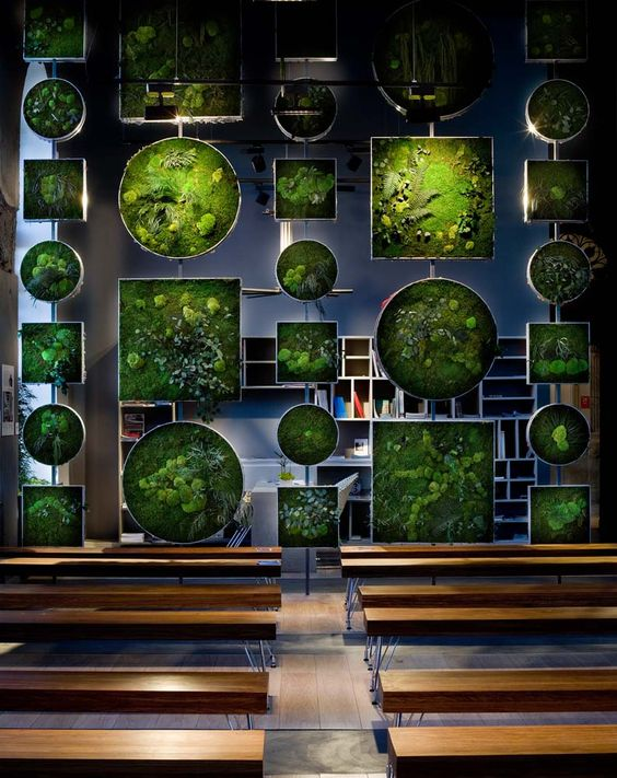Monamour Natural Design in Casa Decor 2012 / Madrid - The Nature Collection / Vertical Indoor Garden with preserved plants: