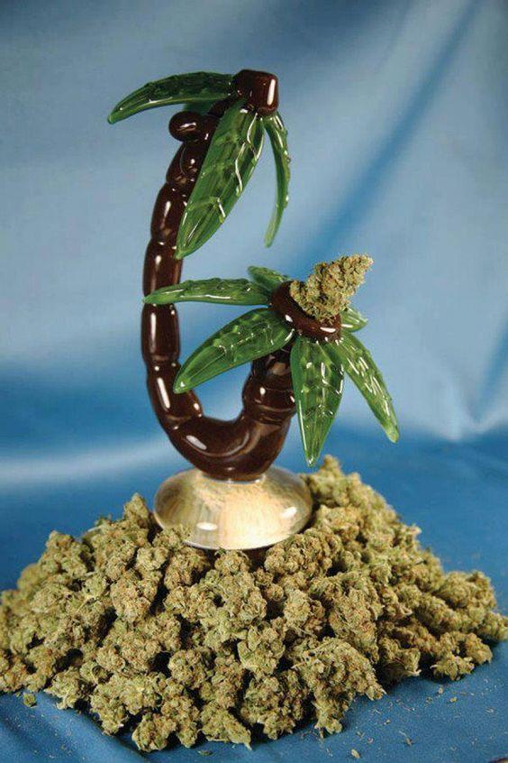 La iniciativa de Rasquera traspasa fronteras - http://growlandia.com/marihuana/la-iniciativa-de-rasquera-traspasa-fronteras/