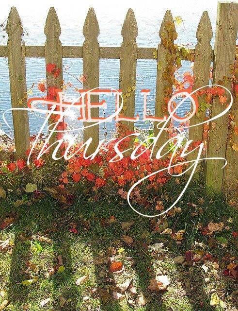Happy Thursday! ❤️